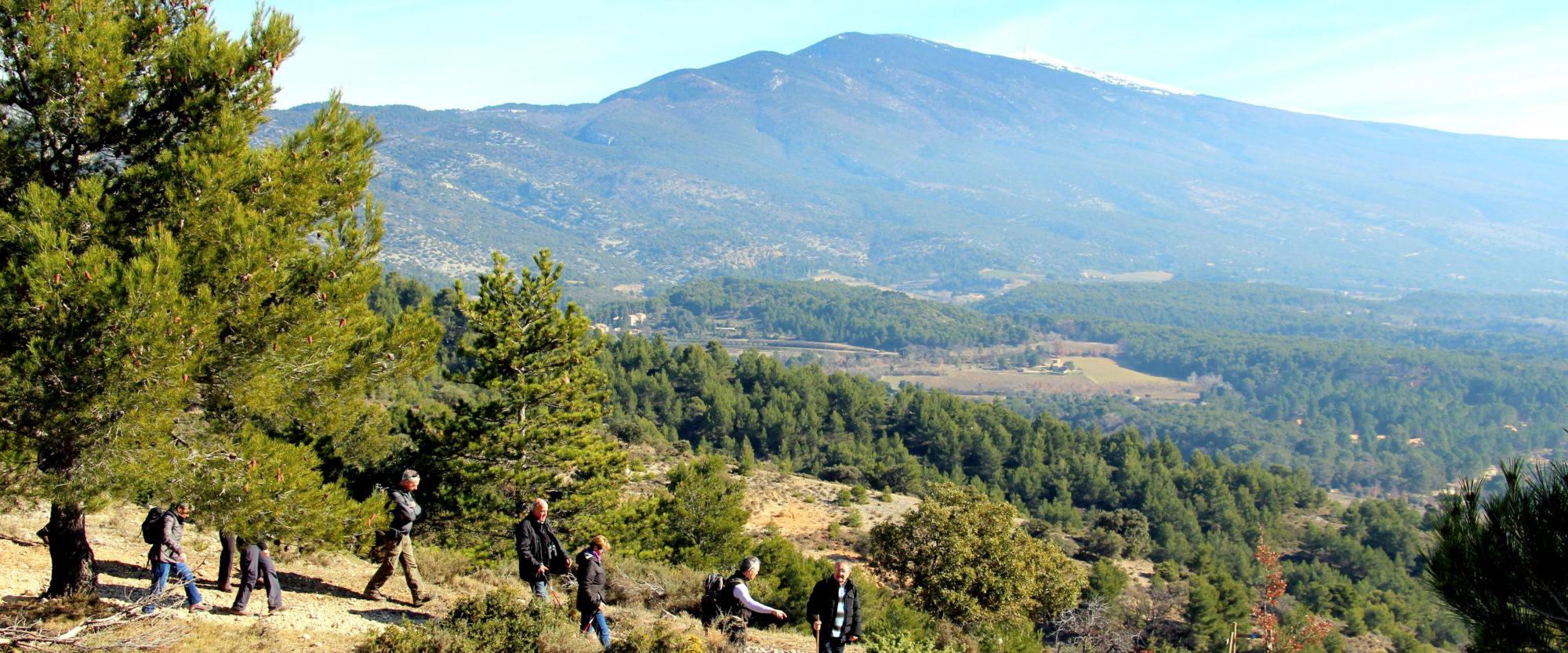 Randonner au pied du Mont Ventoux en provence